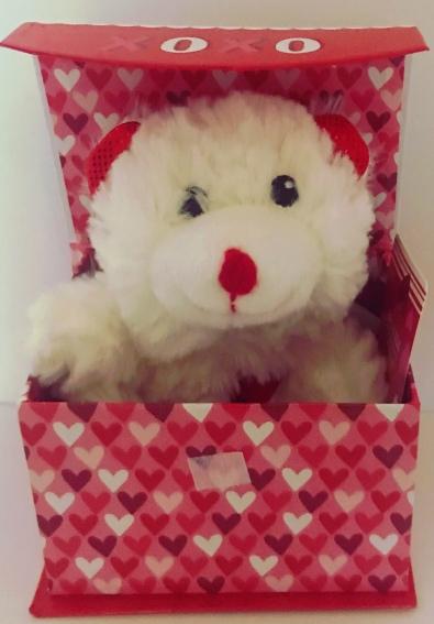 PLUSH BEAR IN A BOX
